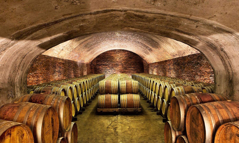 Cantine coppo vini e spumanti del monferrato a canelli for Piccole planimetrie con cantine
